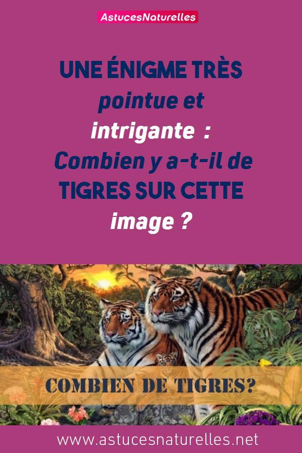 Une énigme très pointue et intrigante : Combien y a-t-il de tigres sur cette image ?