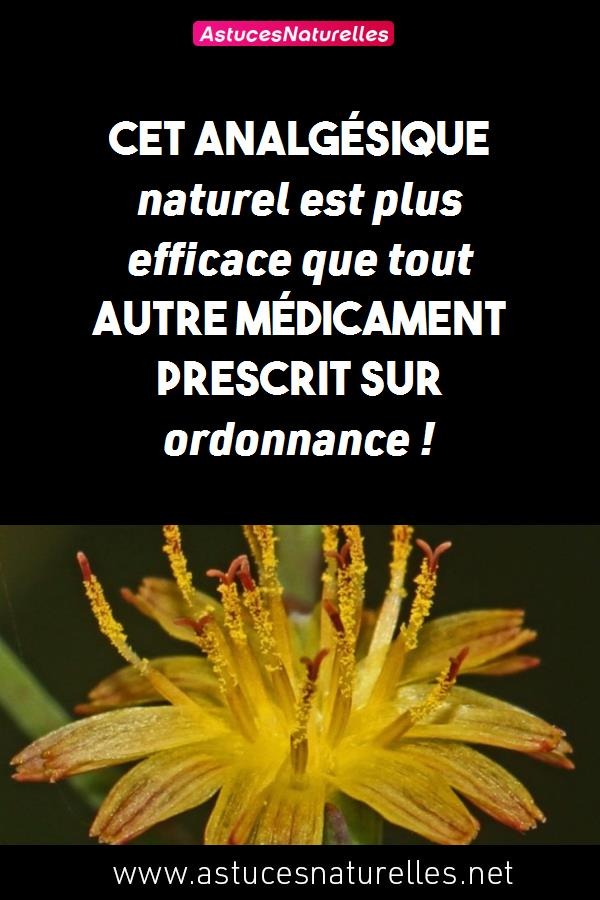 Cet analgésique naturel est plus efficace que tout autre médicament prescrit sur ordonnance !