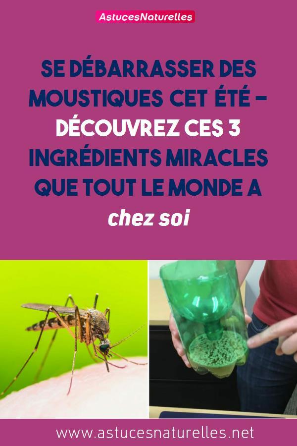 Se débarrasser des moustiques cet été – découvrez ces 3 ingrédients miracles que tout le monde a chez soi