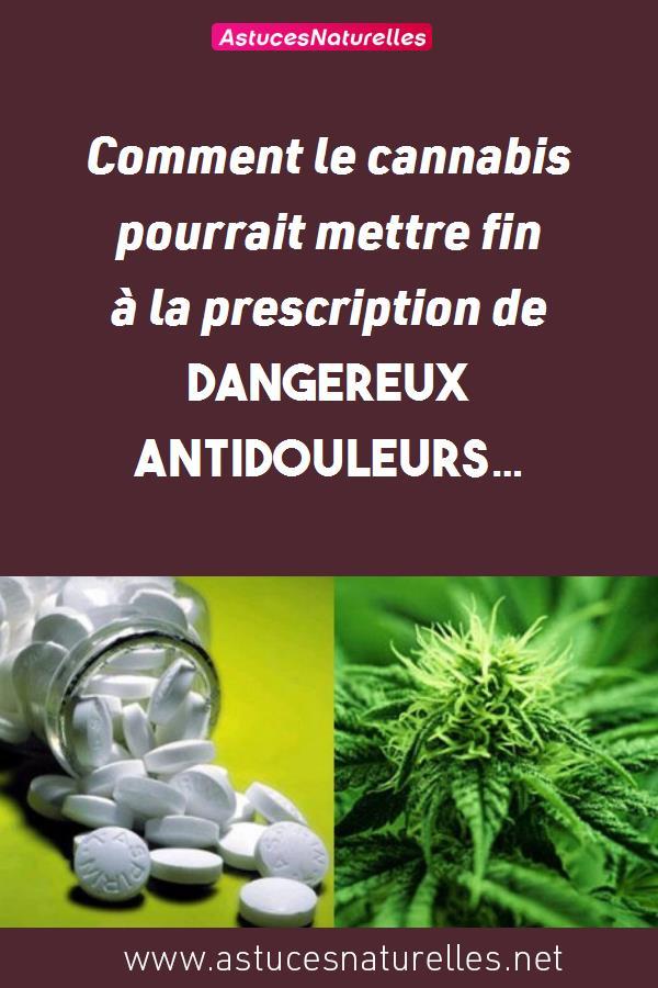 Comment le cannabis pourrait mettre fin à la prescription de dangereux antidouleurs…