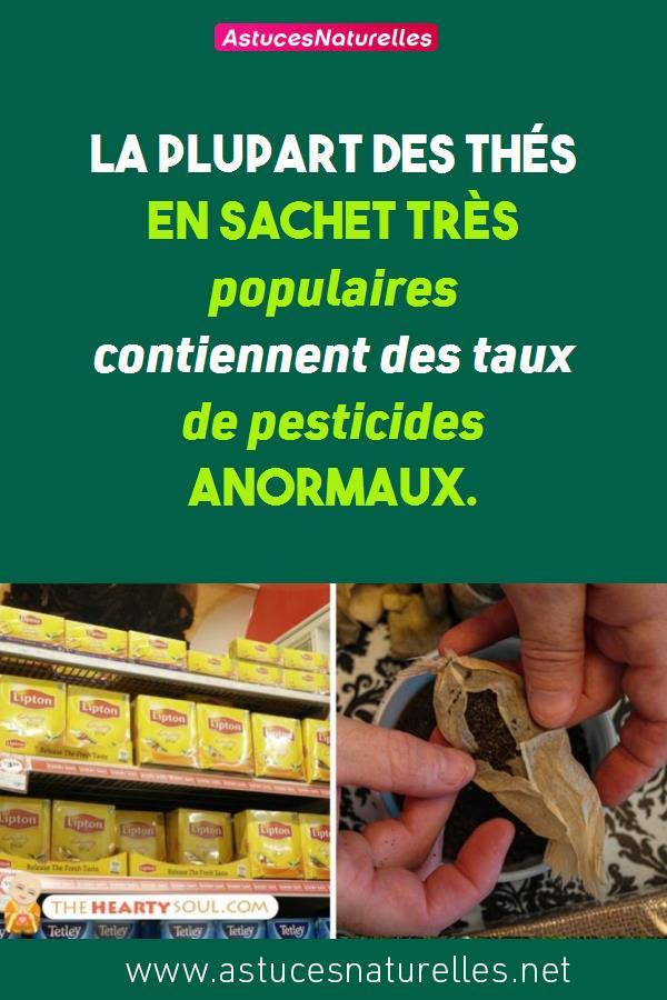 La plupart des THÉS EN SACHET très populaires contiennent des taux de pesticides anormaux.