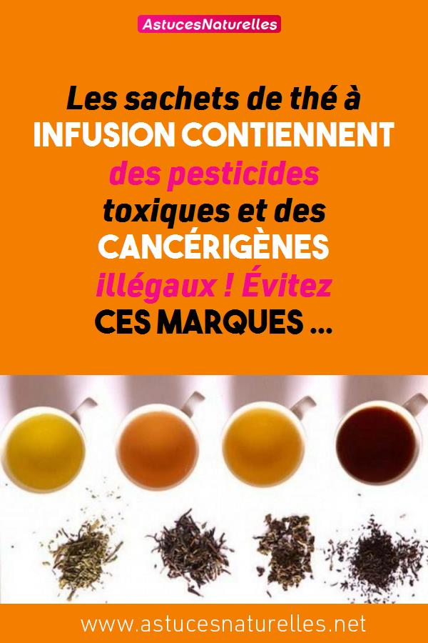 Les sachets de thé à infusion contiennent des pesticides toxiques et des cancérigènes illégaux ! Évitez ces marques …