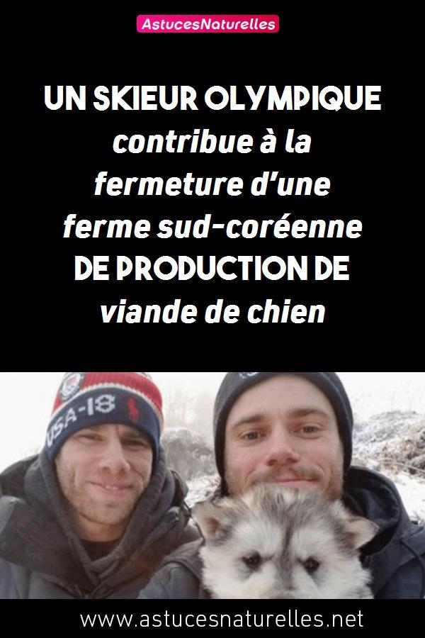 Un skieur olympique contribue à la fermeture d'une ferme sud-coréenne de production de viande de chien