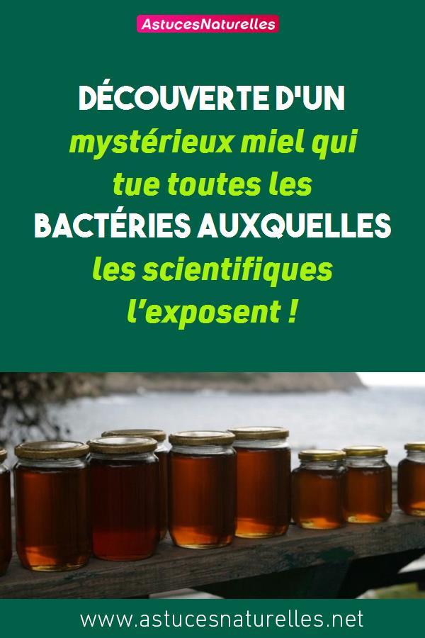 Découverte d'un mystérieux miel qui tue toutes les bactéries auxquelles les scientifiques l'exposent !