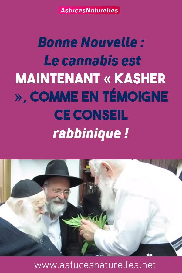 Bonne Nouvelle : Le cannabis est maintenant « Kasher », comme en témoigne ce conseil rabbinique !