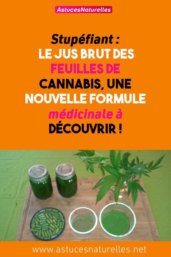Stupéfiant : Le Jus Brut des Feuilles de Cannabis, une nouvelle formule médicinale à Découvrir !