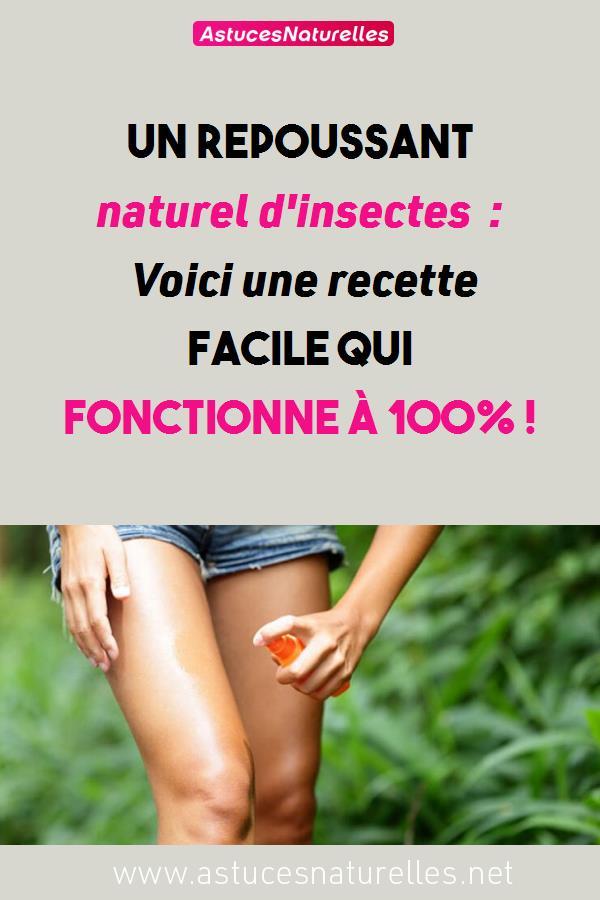 Un repoussant naturel d'insectes : Voici une recette facile qui fonctionne à 100% !