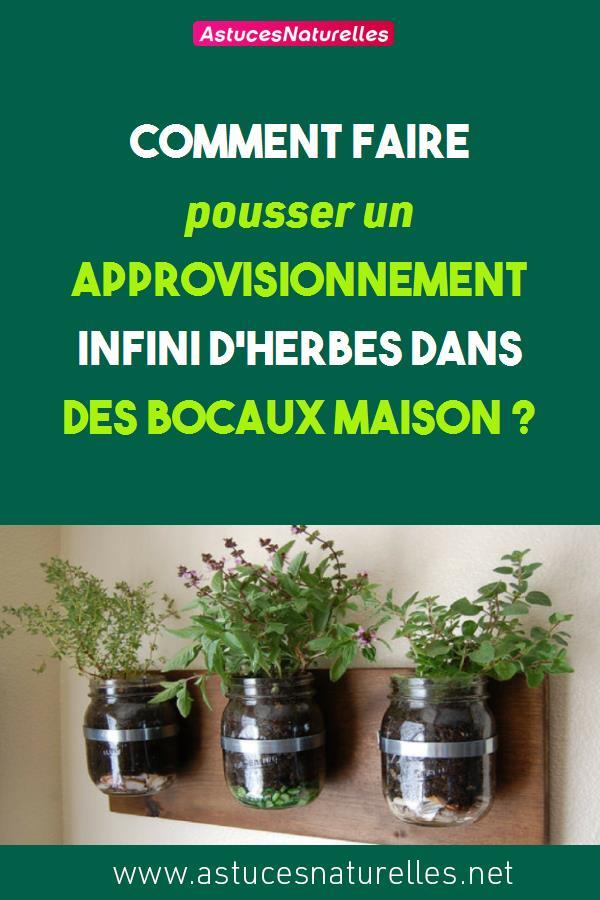 Comment faire pousser un approvisionnement infini d'herbes dans des bocaux Maison ?