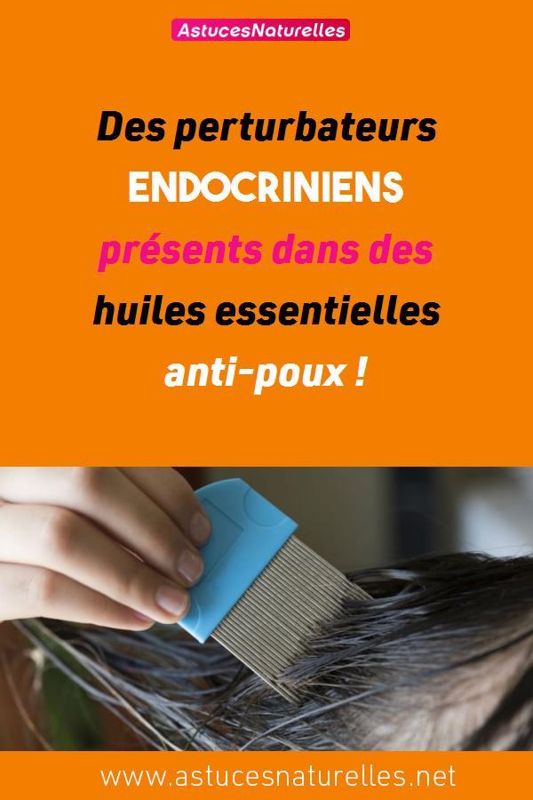 Des perturbateurs endocriniens présents dans des huiles essentielles anti-poux !