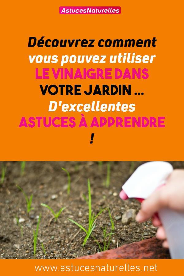 Découvrez comment vous pouvez utiliser le vinaigre dans votre jardin … D'excellentes Astuces à Apprendre !