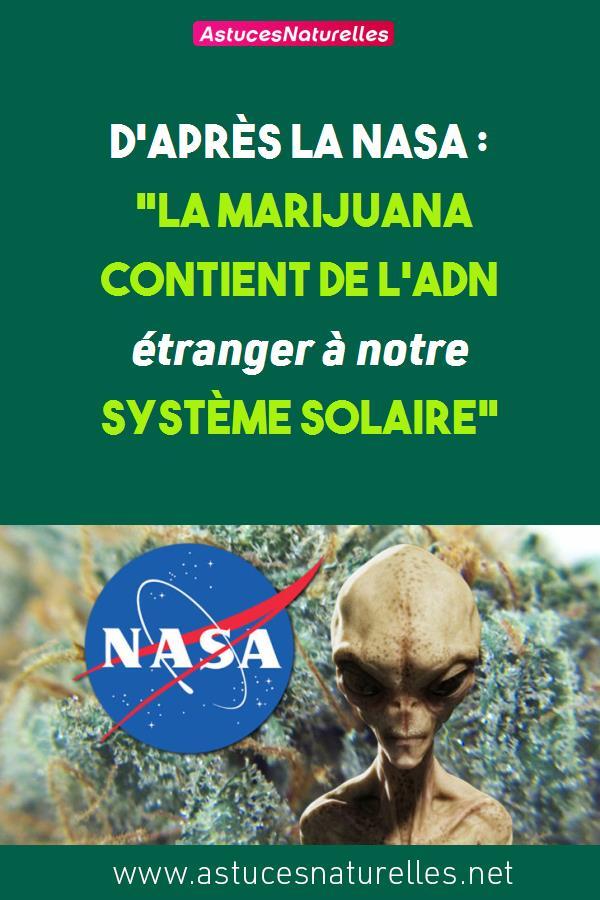 D'après la NASA : «La marijuana contient de l'ADN étranger à notre système solaire»