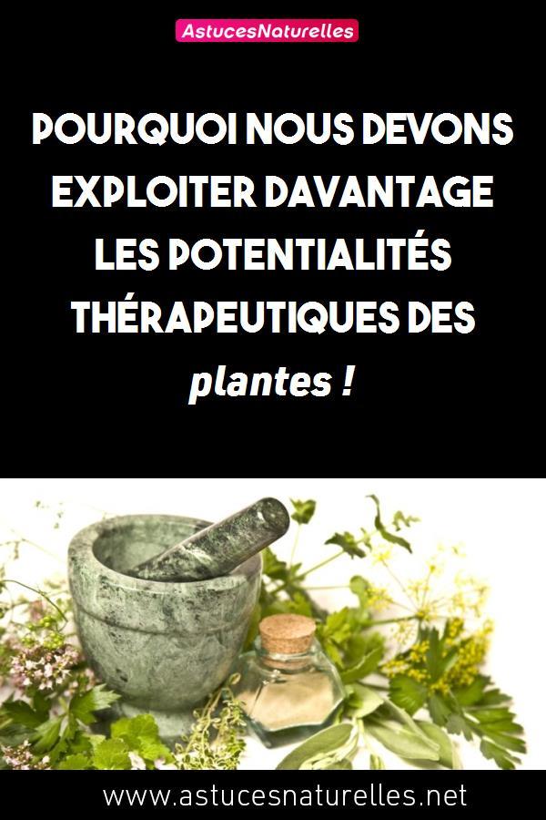 Pourquoi nous devons exploiter davantage les potentialités thérapeutiques des plantes !