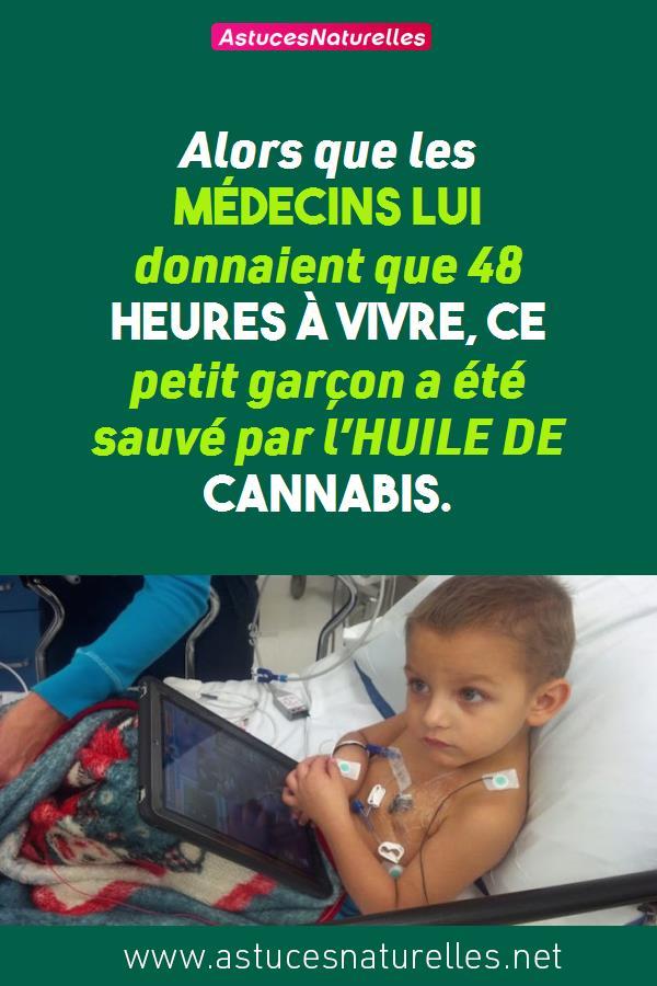 Alors que les médecins lui donnaient que 48 heures à vivre, ce petit garçon a été sauvé par l'HUILE DE CANNABIS.