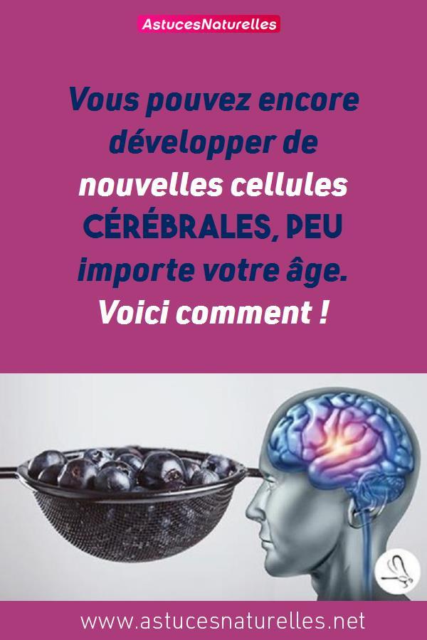 Vous pouvez encore développer de nouvelles cellules cérébrales, peu importe votre âge. Voici comment !