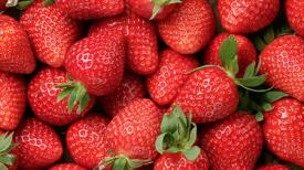 Maman partage astuce simple pour garder fraises fraiches au frigo pendant des semaines