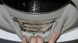Machine à laver : 6 astuces super efficaces pour la garder toujours propre