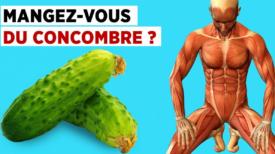 7 Choses Qui Se Produisent Dans Votre Corps Si Vous Mangez Un Concombre Par Jour