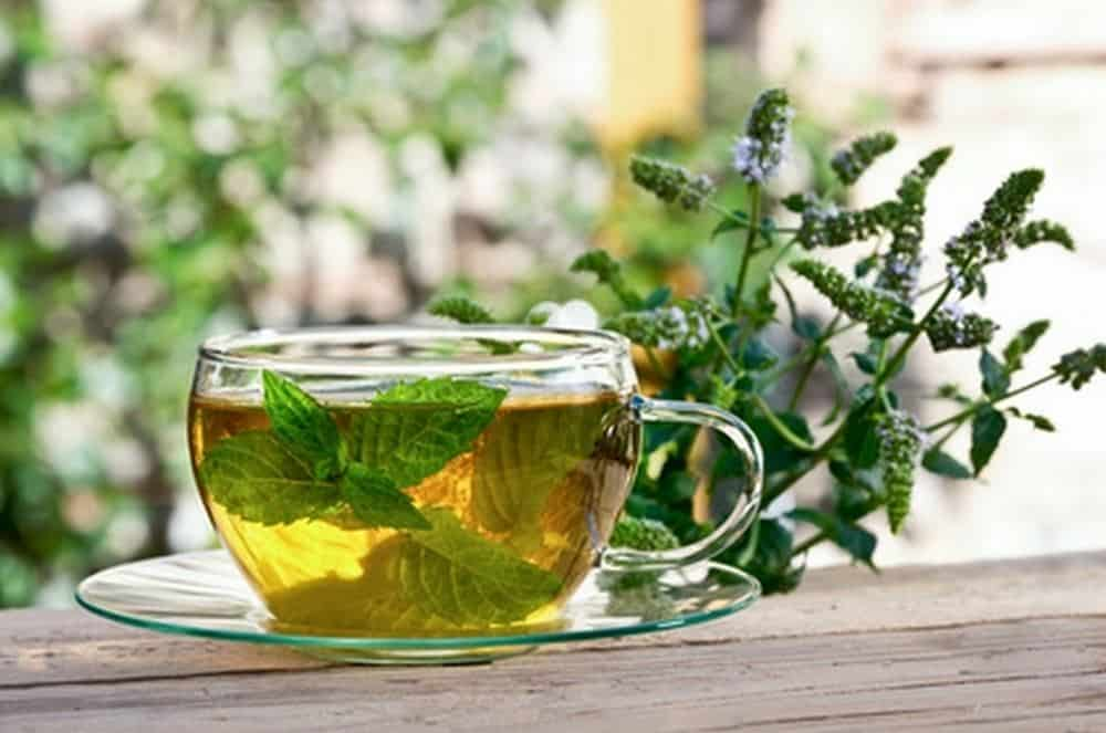 E0eSwrVouiuQSMs0luFV - This homemade herbal tea is very effective against bloating