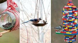 Mangeoire à oiseaux : 12 idées récup' faciles à réaliser