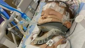 """Bébé, 8 mois, en état de mort cérébrale après avoir été """"secoué"""" par son père – il a besoin de nos prières"""
